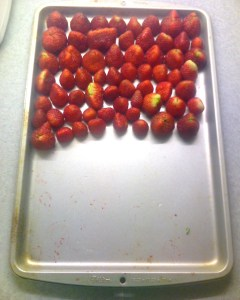 Hull berries, lay them in a single layer on a cookie sheet and put in the freezer overnight. Bag them in a freezer bag but make sure all air is out of the bag before returning them to the freezer. You'll be able to grab a handful of berries whenever you want. Berries should keep for up to 6 months.